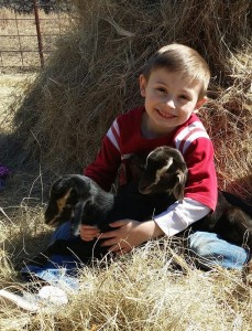 Six year old Nate and Cocoa's babies